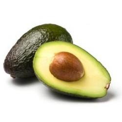 Avocat (Pérou)