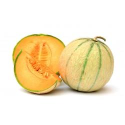 Melon en PROMO (France)