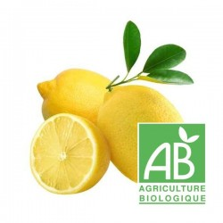 Citron BIO (Italie)