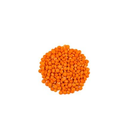 Lentilles corail (Import)
