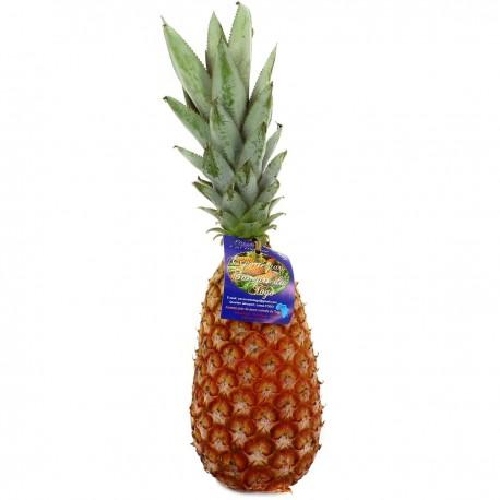 """Ananas """"pain de Sucre"""" ( Ghana)"""