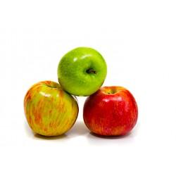TRIO de pommes (France)